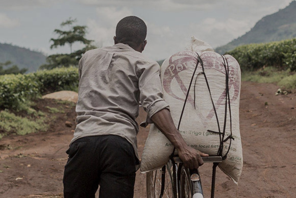 male laborer hauling flour on bicycle
